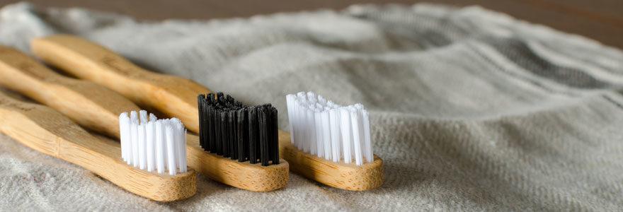 Brosses a dent écologique